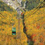 山頂駅舎から望むロープウェイと紅葉