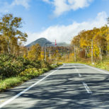Panorama Line In Autumn On The Road
